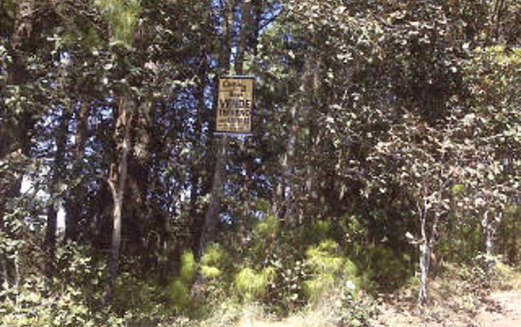 Foto de terreno habitacional en venta en  , san felipe ecatepec, san cristóbal de las casas, chiapas, 1715840 No. 16