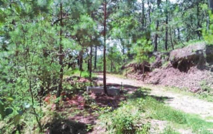 Foto de terreno habitacional en venta en predio rústico san juan bautista vilchis, nueva maravilla, san cristóbal de las casas, chiapas, 413746 no 03