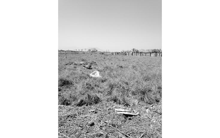 Foto de terreno comercial en renta en  , predio san joaquín, coatzacoalcos, veracruz de ignacio de la llave, 1145195 No. 03