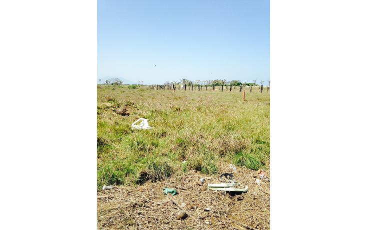Foto de terreno comercial en renta en  , predio san joaquín, coatzacoalcos, veracruz de ignacio de la llave, 1145195 No. 04