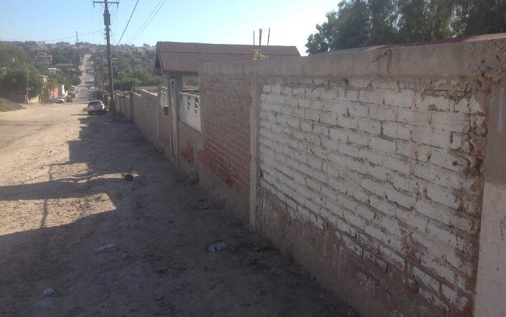 Foto de terreno habitacional en venta en primera, lote 6 , ejido matamoros, tijuana, baja california, 1720506 No. 03