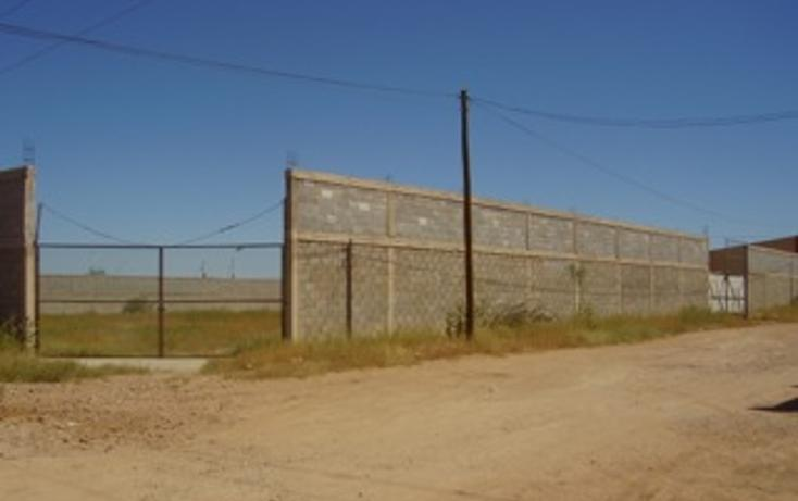 Foto de terreno comercial en venta en  , primero de mayo, chihuahua, chihuahua, 1142167 No. 05
