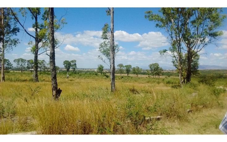 Foto de terreno industrial en venta en  , primero de mayo infonavit, irapuato, guanajuato, 1991626 No. 02