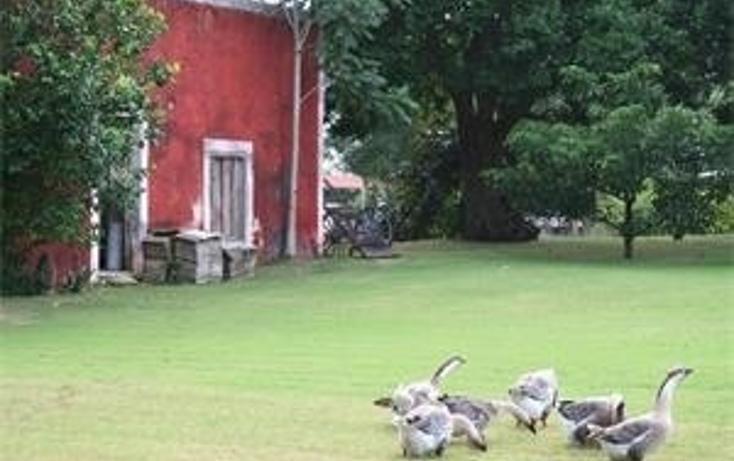 Foto de rancho en venta en  , privada san antonio cucul, mérida, yucatán, 594376 No. 20