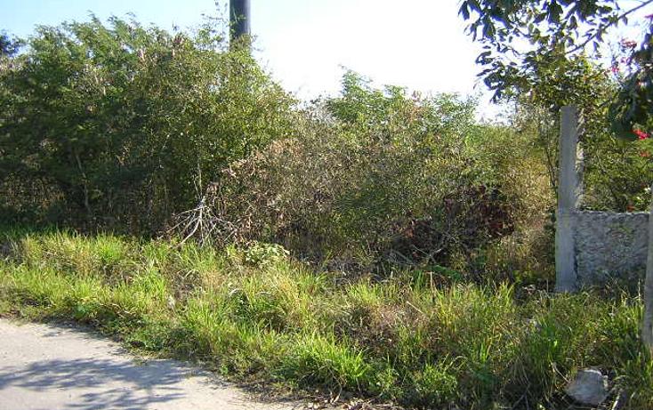 Foto de terreno habitacional en venta en  , progreso de castro centro, progreso, yucatán, 1448695 No. 02