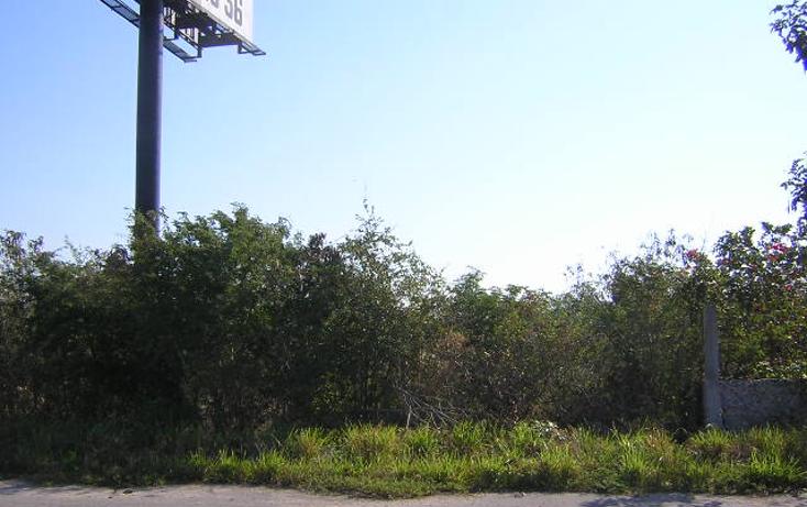 Foto de terreno habitacional en venta en  , progreso de castro centro, progreso, yucatán, 1448695 No. 05
