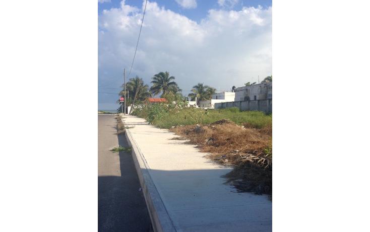 Foto de terreno habitacional en venta en  , progreso de castro centro, progreso, yucatán, 1451411 No. 02