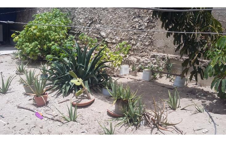 Foto de casa en venta en  , progreso de castro centro, progreso, yucatán, 1778360 No. 30