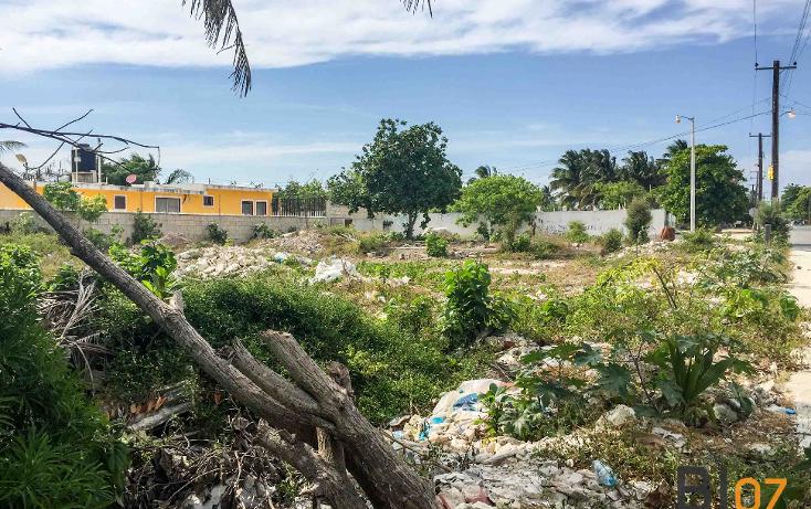 Foto de terreno comercial en venta en  , progreso de castro centro, progreso, yucat?n, 2039480 No. 03