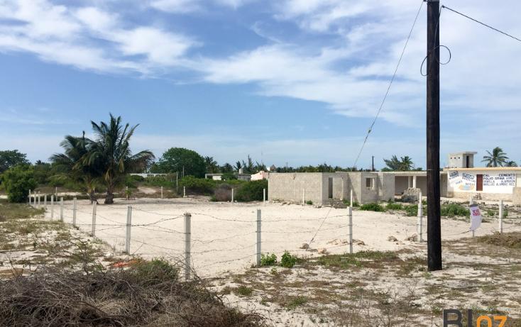 Foto de terreno comercial en venta en  , progreso de castro centro, progreso, yucatán, 2044012 No. 02