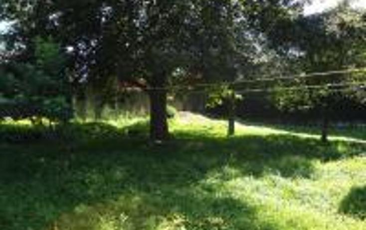 Foto de terreno habitacional en venta en  , progreso macuiltepetl, xalapa, veracruz de ignacio de la llave, 1283023 No. 02