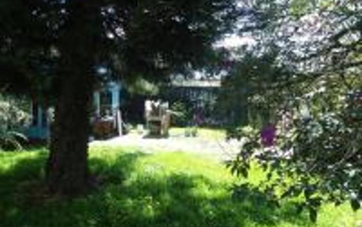 Foto de terreno habitacional en venta en  , progreso macuiltepetl, xalapa, veracruz de ignacio de la llave, 1283023 No. 03