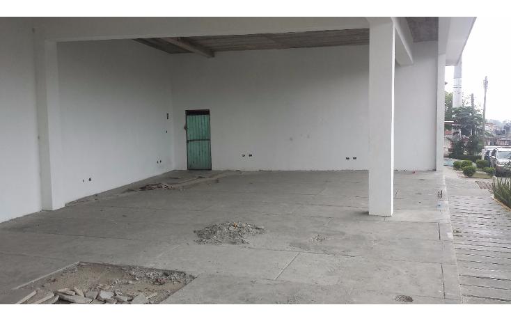 Foto de local en renta en  , progreso macuiltepetl, xalapa, veracruz de ignacio de la llave, 1790060 No. 04