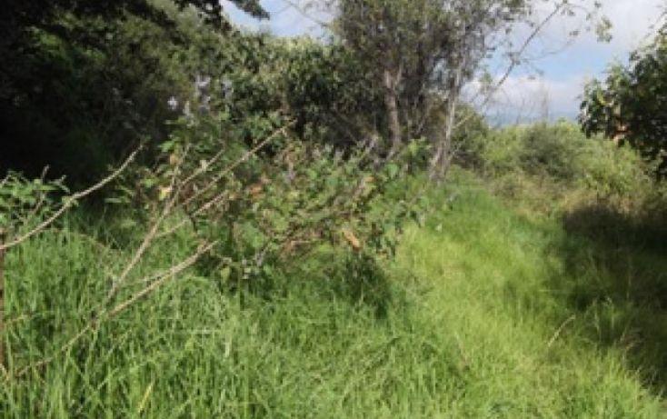 Foto de terreno habitacional en venta en prolongacin hidalgo, adolfo lópez mateos, cuajimalpa de morelos, df, 954179 no 05