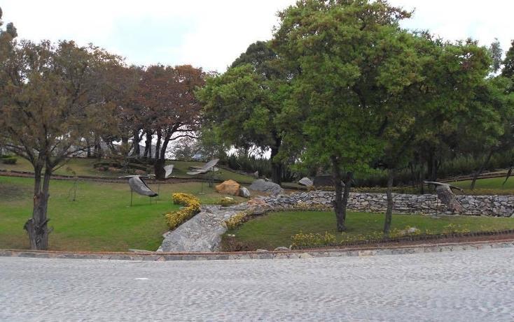 Foto de terreno habitacional en venta en prolongación avenida las haras 3001, haras flor del bosque, puebla, pue. , flor del bosque, amozoc, puebla, 1384405 No. 09