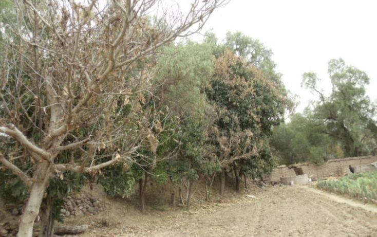 Foto de terreno habitacional en venta en prolongacion juarez, rancho san gabriel, tierra nueva, san luis potosí, 1008651 no 05