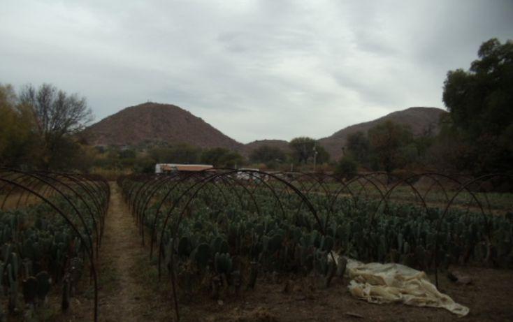 Foto de terreno habitacional en venta en prolongacion juarez, rancho san gabriel, tierra nueva, san luis potosí, 1008651 no 08
