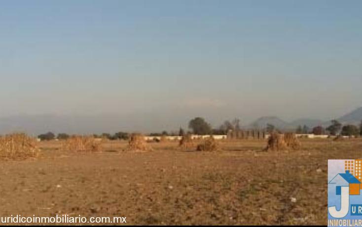 Foto de terreno habitacional en venta en prolongación manuel ávila camacho , san pablo atlazalpan, chalco, méxico, 1626529 No. 06