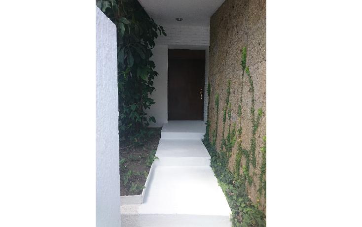 Foto de casa en renta en  , providencia sur, guadalajara, jalisco, 1898900 No. 03