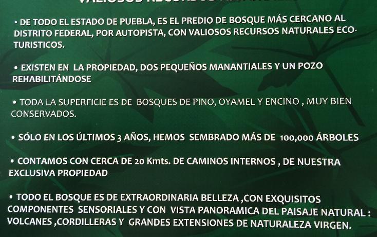 Foto de casa en venta en  , puebla (hermanos serdán), huejotzingo, puebla, 948907 No. 06