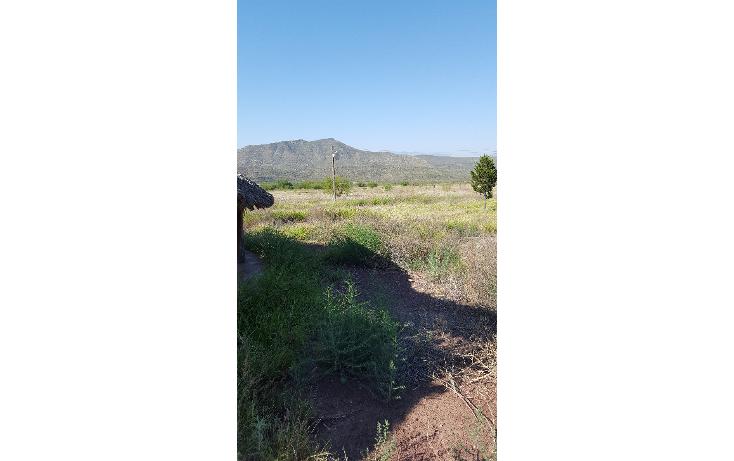 Foto de terreno comercial en venta en  , puebla, saltillo, coahuila de zaragoza, 1283269 No. 03