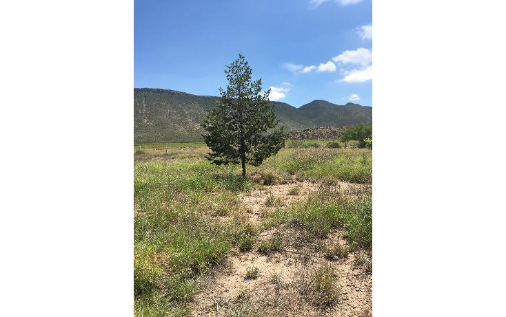Foto de terreno comercial en venta en  , puebla, saltillo, coahuila de zaragoza, 1364739 No. 06