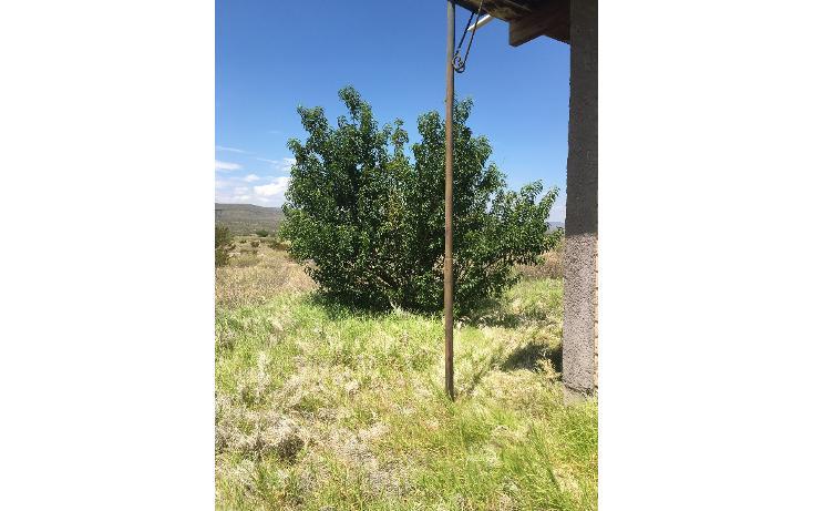 Foto de terreno comercial en venta en  , puebla, saltillo, coahuila de zaragoza, 1364739 No. 07