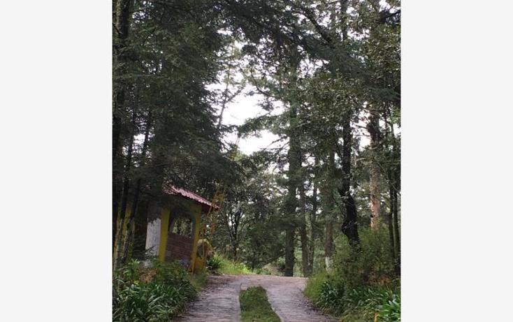Foto de terreno habitacional en venta en  , pueblo nuevo, mineral del monte, hidalgo, 3419030 No. 03