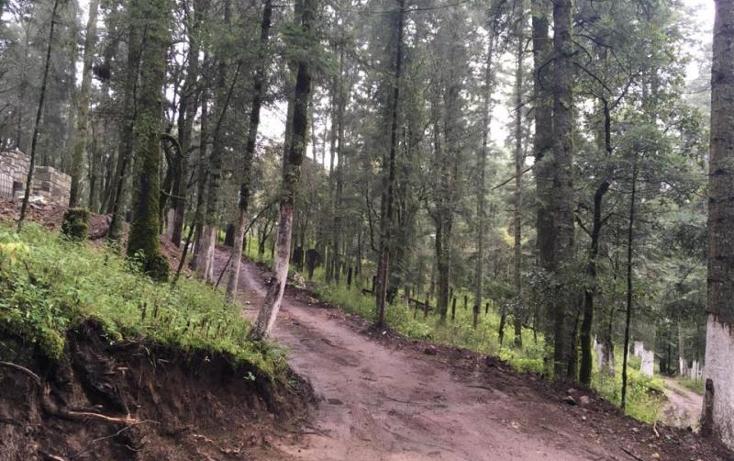 Foto de terreno habitacional en venta en  , pueblo nuevo, mineral del monte, hidalgo, 3419030 No. 05
