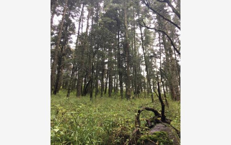 Foto de terreno habitacional en venta en  , pueblo nuevo, mineral del monte, hidalgo, 3419030 No. 06