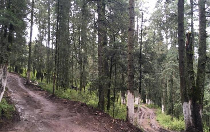 Foto de terreno habitacional en venta en  , pueblo nuevo, mineral del monte, hidalgo, 3419030 No. 08