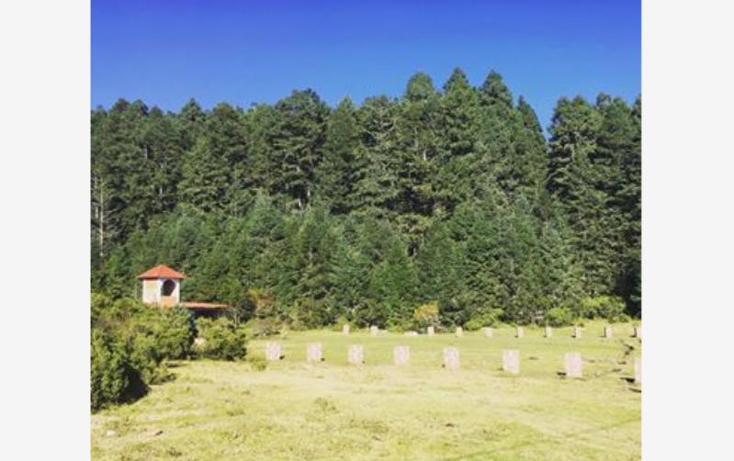 Foto de terreno habitacional en venta en  , pueblo nuevo, mineral del monte, hidalgo, 3419030 No. 15