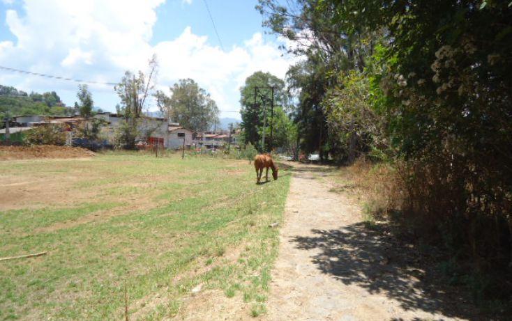 Foto de terreno habitacional en venta en pueblo sn, valle de bravo, valle de bravo, estado de méxico, 1698016 no 01