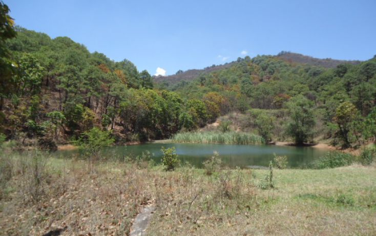 Foto de terreno habitacional en venta en pueblo sn, valle de bravo, valle de bravo, estado de méxico, 1698020 no 04