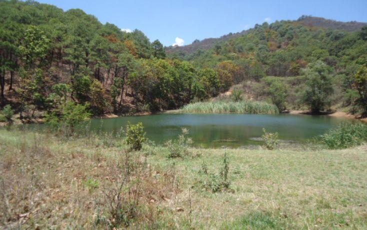 Foto de terreno habitacional en venta en pueblo sn, valle de bravo, valle de bravo, estado de méxico, 1698020 no 05
