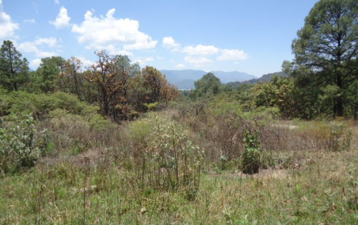 Foto de terreno habitacional en venta en pueblo sn, valle de bravo, valle de bravo, estado de méxico, 1698020 no 08