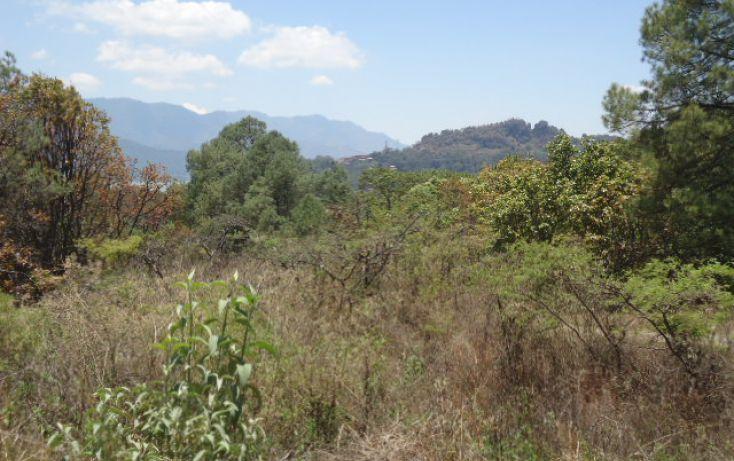 Foto de terreno habitacional en venta en pueblo sn, valle de bravo, valle de bravo, estado de méxico, 1698020 no 10