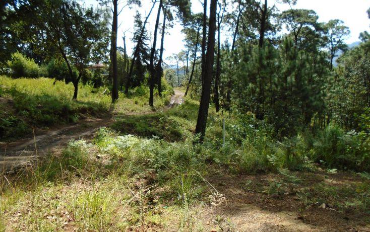 Foto de terreno habitacional en venta en pueblo sn, valle de bravo, valle de bravo, estado de méxico, 1698024 no 02