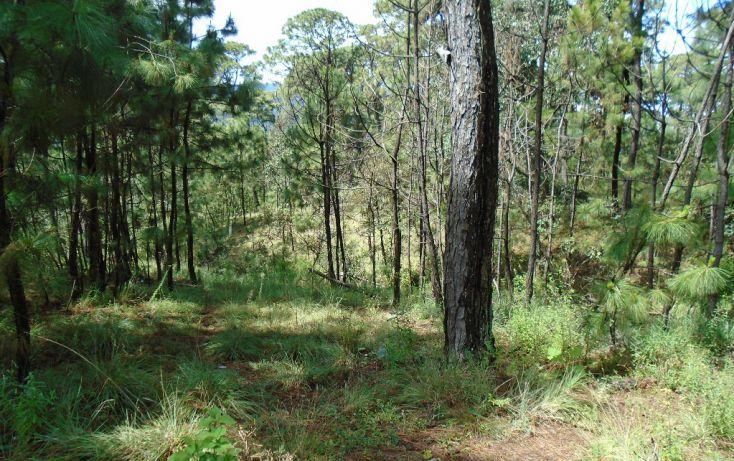 Foto de terreno habitacional en venta en pueblo sn, valle de bravo, valle de bravo, estado de méxico, 1698024 no 05