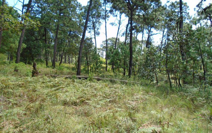 Foto de terreno habitacional en venta en pueblo sn, valle de bravo, valle de bravo, estado de méxico, 1698024 no 08