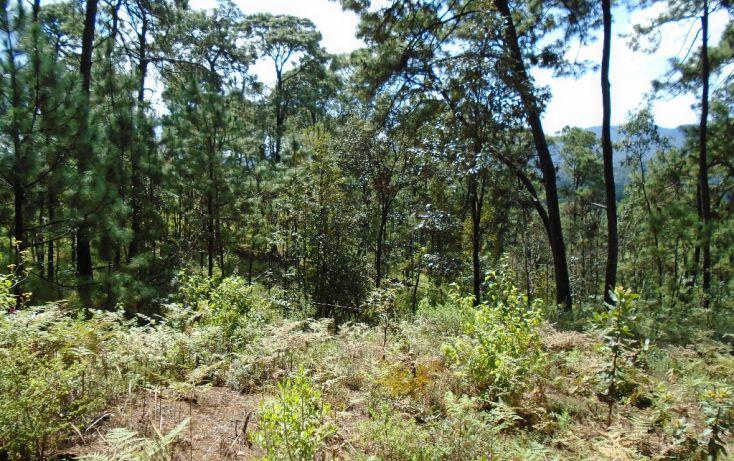 Foto de terreno habitacional en venta en pueblo sn, valle de bravo, valle de bravo, estado de méxico, 1698024 no 09