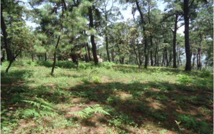 Foto de terreno habitacional en venta en pueblo sn, valle de bravo, valle de bravo, estado de méxico, 1698098 no 02