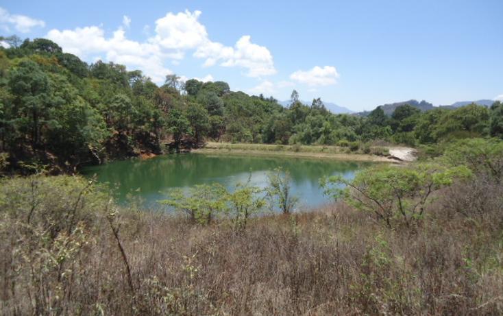 Foto de terreno habitacional en venta en  , valle de bravo, valle de bravo, méxico, 1698020 No. 01