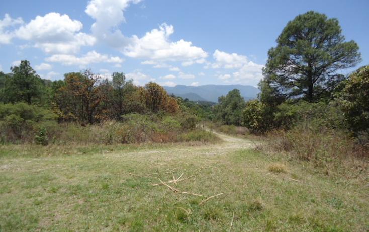 Foto de terreno habitacional en venta en  , valle de bravo, valle de bravo, méxico, 1698020 No. 03