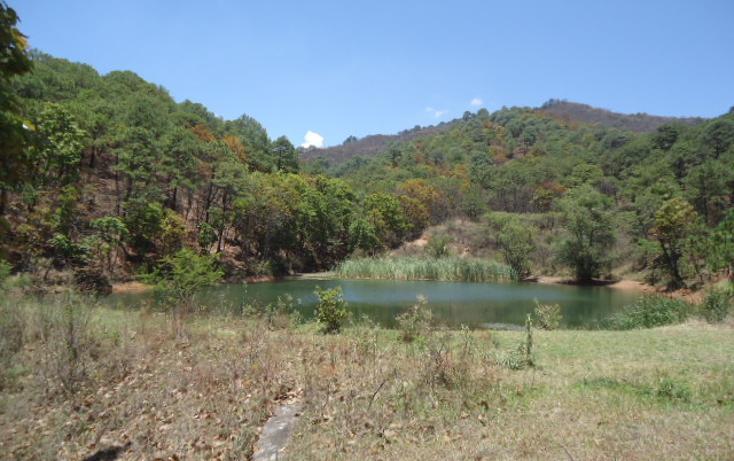 Foto de terreno habitacional en venta en  , valle de bravo, valle de bravo, méxico, 1698020 No. 04