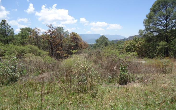Foto de terreno habitacional en venta en  , valle de bravo, valle de bravo, méxico, 1698020 No. 08