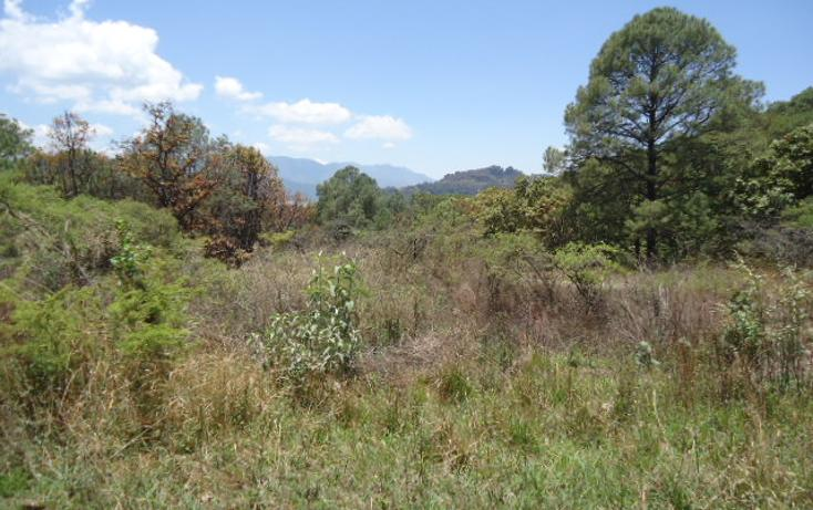 Foto de terreno habitacional en venta en  , valle de bravo, valle de bravo, méxico, 1698020 No. 09