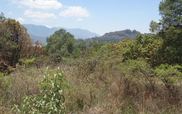 Foto de terreno habitacional en venta en  , valle de bravo, valle de bravo, méxico, 1698020 No. 10