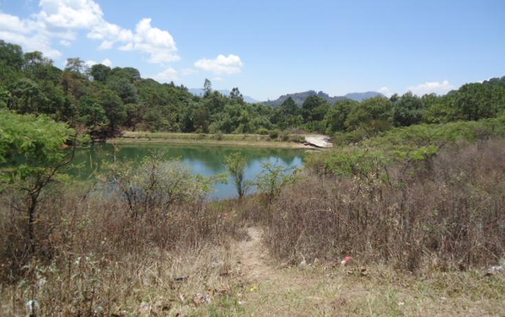 Foto de terreno habitacional en venta en  , valle de bravo, valle de bravo, méxico, 1698020 No. 11