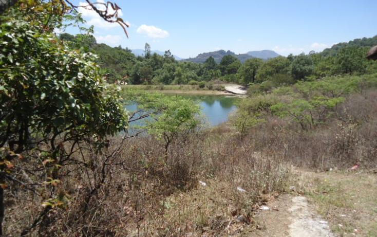 Foto de terreno habitacional en venta en  , valle de bravo, valle de bravo, méxico, 1698020 No. 12